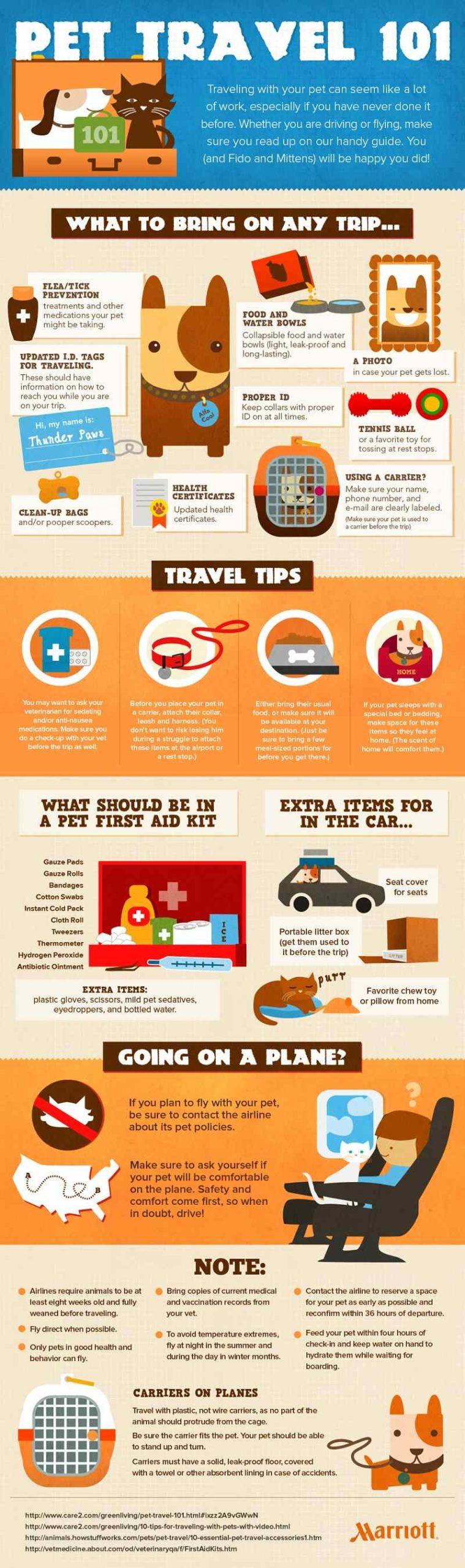 Infografía viajar con mascotas